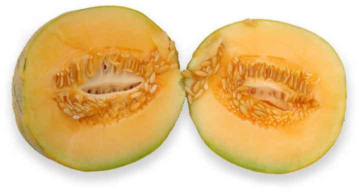 Melon Cucumis Melo Linn Cantaloupe Cai Gua Philippine Medicinal Herbs Alternative Medicine Перевод слова cantaloupe, американское и британское произношение, транскрипция. stuartxchange
